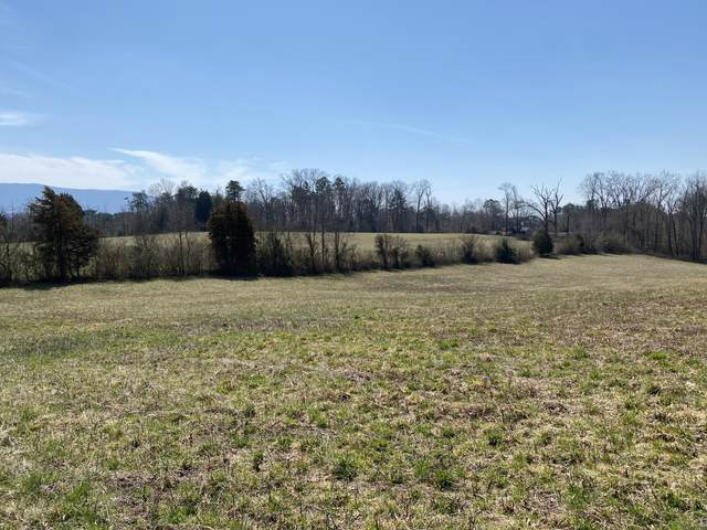 Baumgardner Rd, Maryville, TN 37803 (#1149109) :: Tennessee Elite Realty