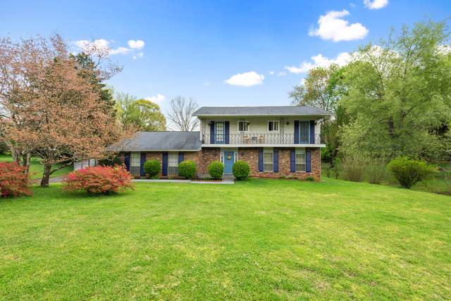 8620 Springfield Drive, Knoxville, TN 37923 (#1149135) :: Adam Wilson Realty