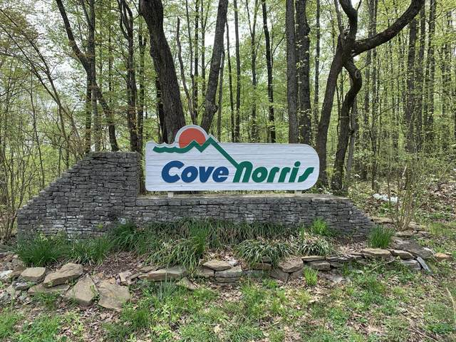 Cove Norris Rd, Caryville, TN 37714 (#1149140) :: Shannon Foster Boline Group