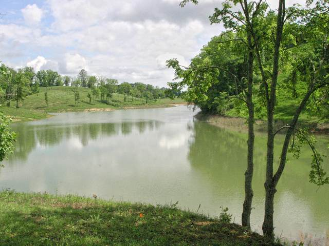 Lot 21 Ferry Hill Rd, Dandridge, TN 37725 (#1149216) :: Adam Wilson Realty