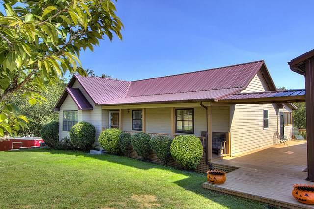 937 Hidden Harbor Lane, Sevierville, TN 37876 (#1149228) :: Catrina Foster Group