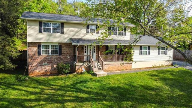 1419 Live Oak Circle, Knoxville, TN 37932 (#1149233) :: Catrina Foster Group
