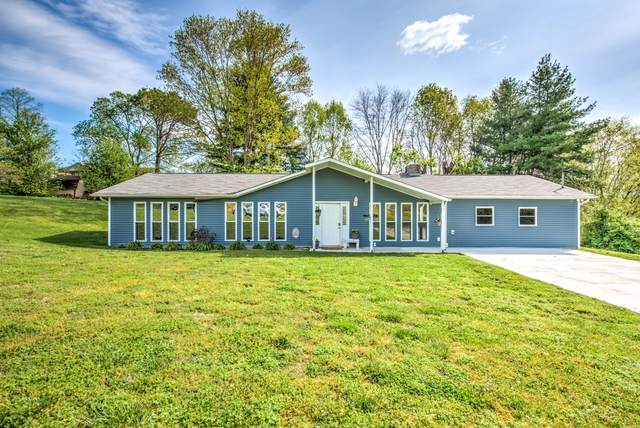 177 Vanderview Drive, Seymour, TN 37865 (#1149503) :: Catrina Foster Group