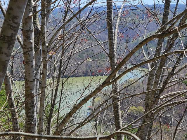 Lots 287 & 288 Bluff View Rd, New Tazewell, TN 37825 (#1149521) :: Cindy Kraus Group | Realty Executives Associates