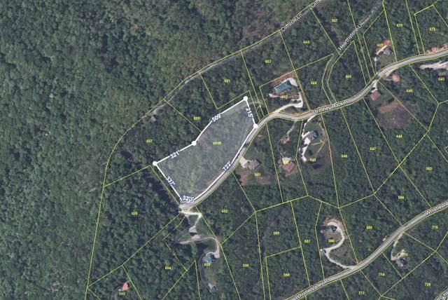 211 Blackstone Lane Lane, New Tazewell, TN 37825 (#1149592) :: Cindy Kraus Group | Realty Executives Associates