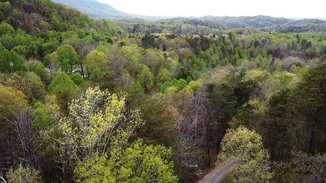 Roy Lee Way Lot #19, Seymour, TN 37865 (#1149614) :: Tennessee Elite Realty