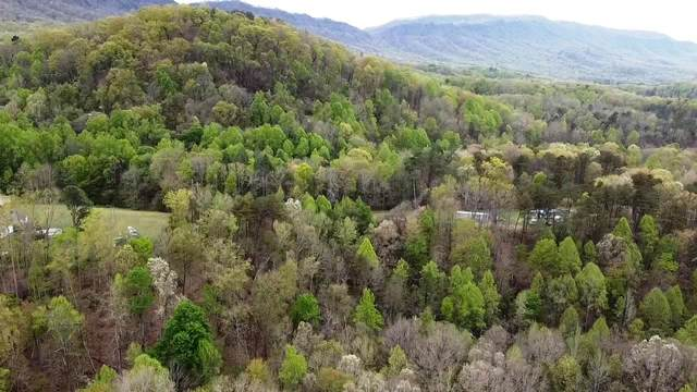Roy Lee Way Lot #20, Seymour, TN 37865 (#1149615) :: Tennessee Elite Realty