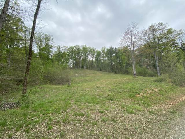 Wildcat Tr, Madisonville, TN 37354 (#1149631) :: Shannon Foster Boline Group