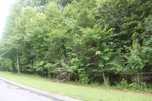 109 Lake Harbor Drive, Lenoir City, TN 37772 (#1149663) :: Shannon Foster Boline Group