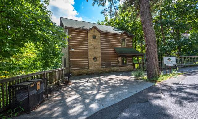 1137 Upper Alpine Way, Gatlinburg, TN 37738 (#1149722) :: Shannon Foster Boline Group