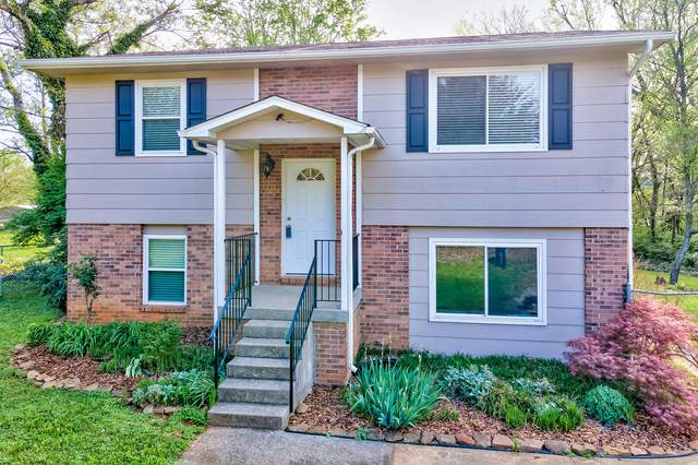 2114 Sunny Lane, Knoxville, TN 37912 (#1149726) :: Billy Houston Group