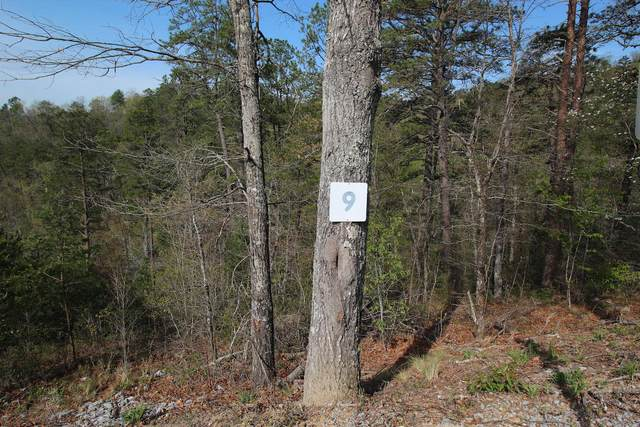 Lot 9 Summit Trails Dr., Sevierville, TN 37876 (#1149769) :: Billy Houston Group