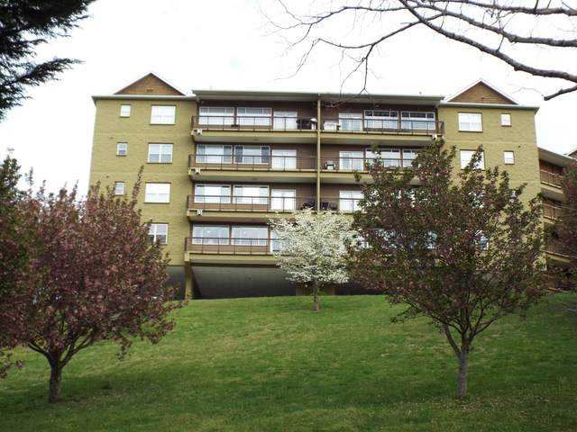 338 Pinnacle View Way Unit 124, Gatlinburg, TN 37738 (#1149778) :: Tennessee Elite Realty