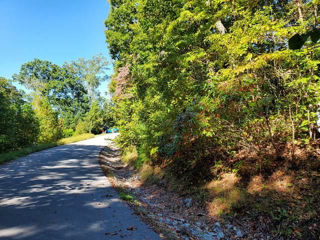 Lot 579 Tortoiseshell Circle, New Tazewell, TN 37825 (#1149820) :: Cindy Kraus Group | Realty Executives Associates