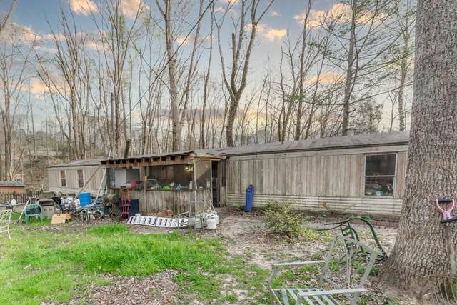 1538 Wilhite Creek Rd, Sevierville, TN 37876 (#1149881) :: Tennessee Elite Realty