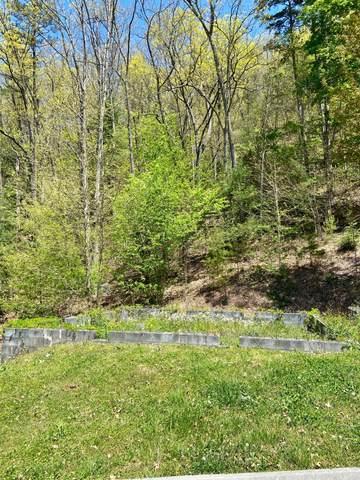 3213 Smoky Ridge Way, Sevierville, TN 37862 (#1149884) :: Adam Wilson Realty