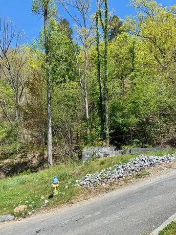 3217 Smoky Ridge Way, Sevierville, TN 37862 (#1149889) :: Adam Wilson Realty
