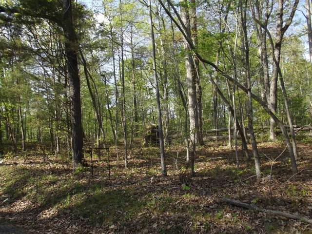 Lot 186 Scenic Lakeview Drive, Spring City, TN 37381 (#1149977) :: The Cook Team