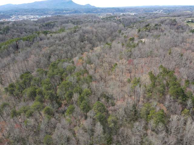 19.76 Ac Ridge Rd, Pigeon Forge, TN 37863 (#1149989) :: Billy Houston Group