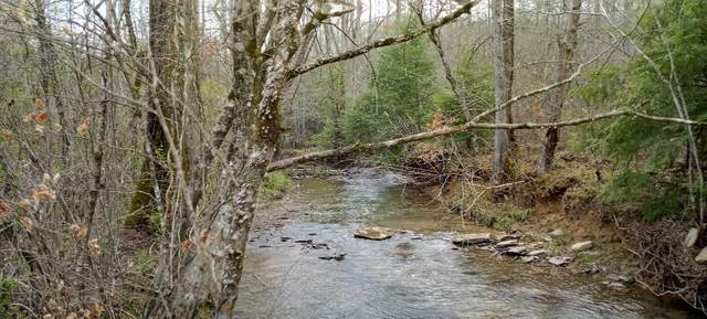 Black Creek Rd, Robbins, TN 37852 (MLS #1150004) :: Austin Sizemore Team