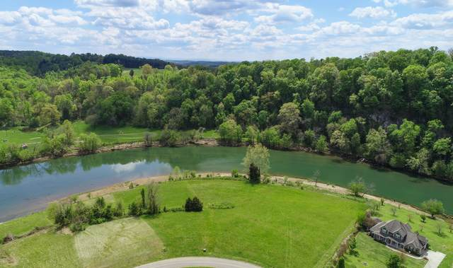 River Stone Lot 12 Rd, Blaine, TN 37709 (MLS #1150022) :: Austin Sizemore Team