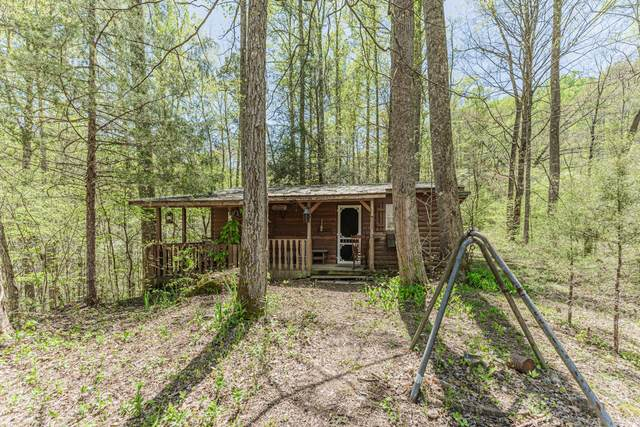 5192 Jones Cove Rd, Cosby, TN 37722 (#1150026) :: Billy Houston Group