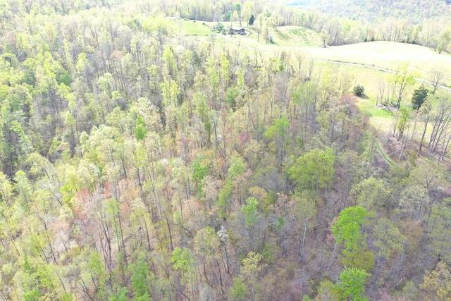 Buzzard Roost Tract 3, Jamestown, TN 38556 (MLS #1150052) :: Austin Sizemore Team