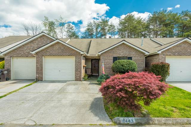 8443 Norway St, Knoxville, TN 37931 (#1150053) :: Adam Wilson Realty
