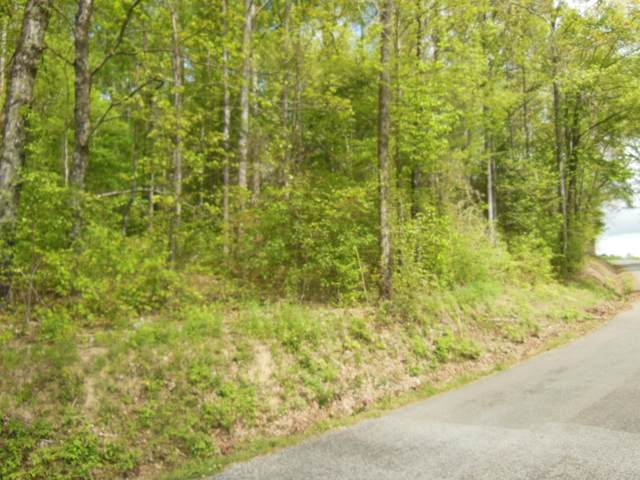 County Road 3, Calhoun, TN 37309 (#1150069) :: Shannon Foster Boline Group