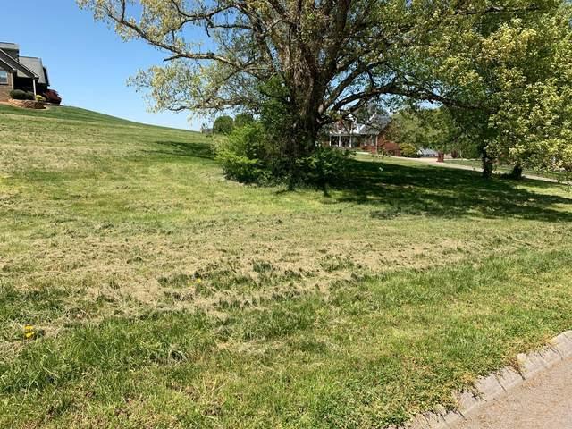 River Run Circle, Sevierville, TN 37876 (#1150117) :: Adam Wilson Realty
