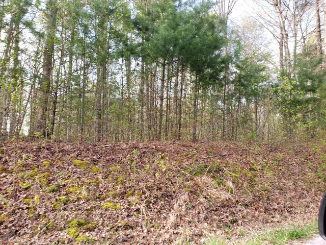 Lot 1 Evergreen Drive, Oneida, TN 37841 (#1150136) :: Cindy Kraus Group | Realty Executives Associates