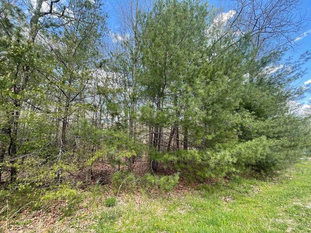 Chinkapin Trail, Monterey, TN 38574 (#1150190) :: Catrina Foster Group