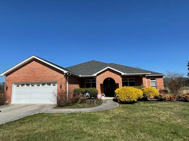 273 Doane Rd, New Market, TN 37820 (#1150260) :: Shannon Foster Boline Group