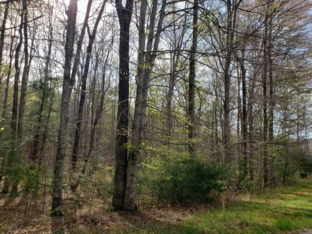 Lot 6 Evergreen Drive, Oneida, TN 37841 (#1150320) :: Cindy Kraus Group | Realty Executives Associates