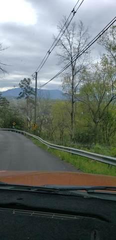 Walker Trail Tr, Sevierville, TN 37876 (#1150409) :: The Terrell-Drager Team