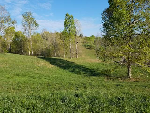 Red Bud (Lot 14) Lane, Sneedville, TN 37869 (#1150420) :: Shannon Foster Boline Group