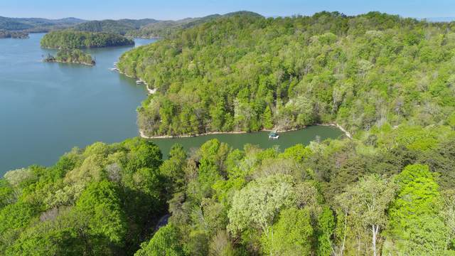 L-166 Pearl Pt., Sharps Chapel, TN 37866 (#1150483) :: Shannon Foster Boline Group