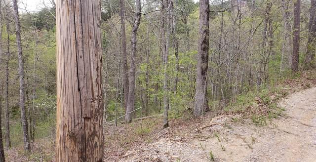 Bassett Way, Sevierville, TN 37876 (#1150540) :: The Terrell-Drager Team