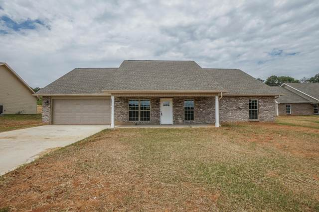 5737 Nails Creek Rd, Maryville, TN 37804 (#1150559) :: JET Real Estate