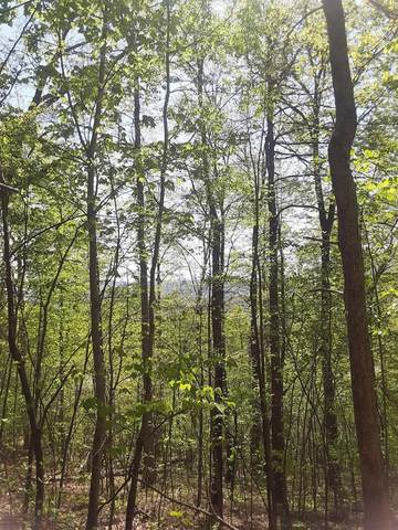 Lot 4 Country Mtn Rd, Cosby, TN 37722 (#1150615) :: Cindy Kraus Group   Realty Executives Associates