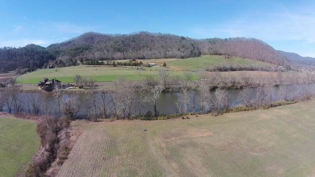 Lot 21 River Rapids Way, Del Rio, TN 37727 (#1150700) :: Cindy Kraus Group | Realty Executives Associates