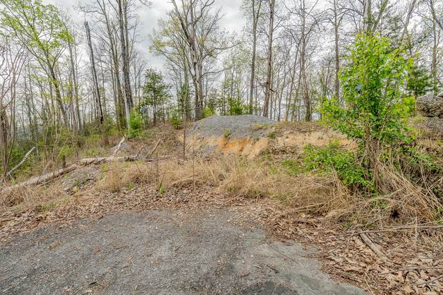 Fox View Lane, Pigeon Forge, TN 37876 (#1150728) :: Cindy Kraus Group | Realty Executives Associates