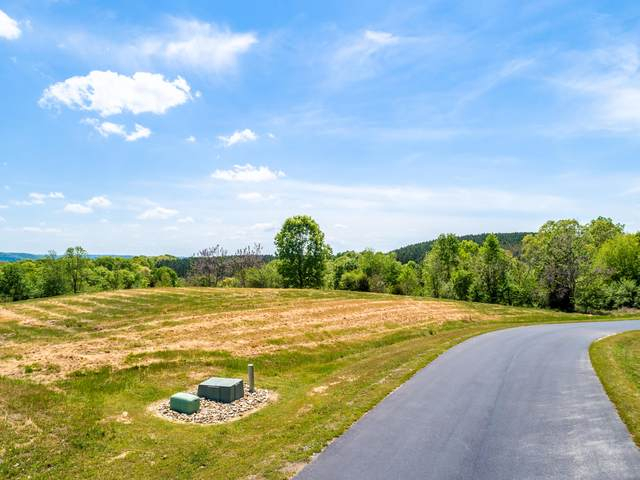 112 Emerald Pointe Circle, Rockwood, TN 37854 (#1150850) :: Shannon Foster Boline Group