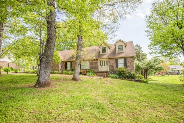 9805 Tallahassee Drive, Knoxville, TN 37923 (#1150943) :: Shannon Foster Boline Group