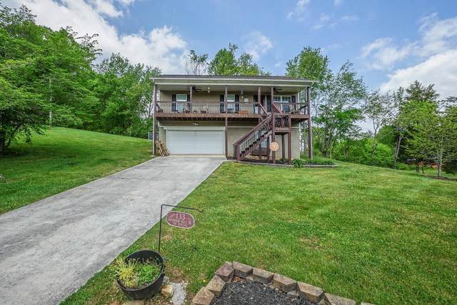 133 Wildwood Hills Drive, Maryville, TN 37804 (#1150989) :: Shannon Foster Boline Group