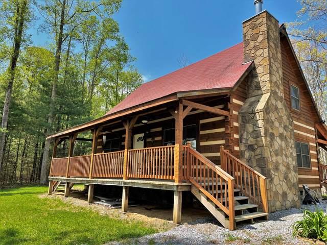 1196 Ridge Hollow Rd, Del Rio, TN 37727 (#1151055) :: Cindy Kraus Group   Realty Executives Associates