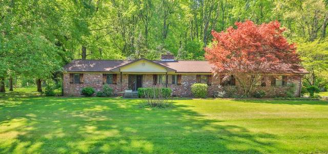 6500 Spring View Lane, Knoxville, TN 37918 (#1151184) :: Shannon Foster Boline Group