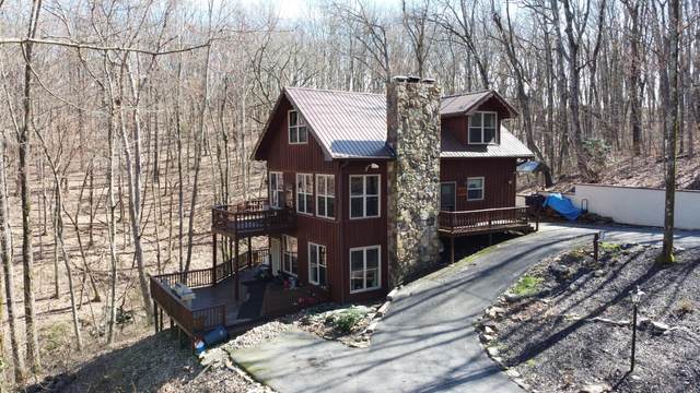 54 Dragon Canoe, Crab Orchard, TN 37723 (#1151269) :: Shannon Foster Boline Group