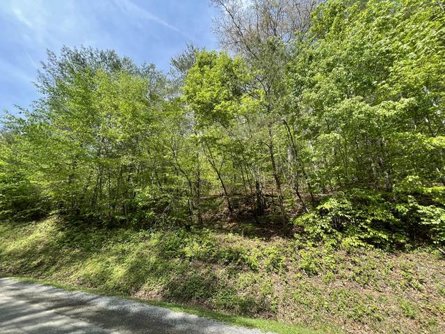 Cane Creek Mountain Rd, Tellico Plains, TN 37385 (#1151277) :: Realty Executives Associates Main Street