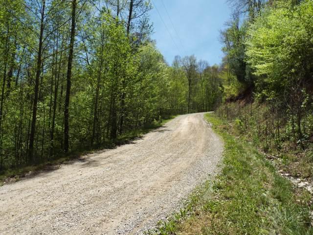Hidden Hills Rd, Wartburg, TN 37887 (#1151367) :: Cindy Kraus Group | Realty Executives Associates